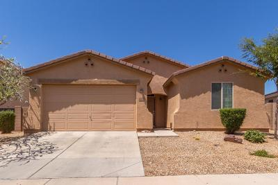 Surprise Single Family Home For Sale: 17684 W Molly Lane