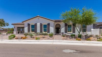 Litchfield Park Single Family Home For Sale: 13770 W Bloomington Street