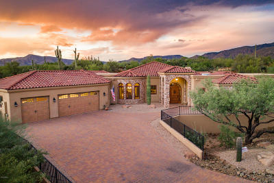 Cave Creek Single Family Home For Sale: 6832 E Stevens Road