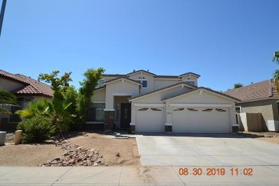 Mesa Single Family Home For Sale: 10419 E Kiva Avenue
