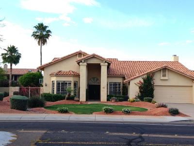 Scottsdale Single Family Home For Sale: 9530 E Larkspur Drive