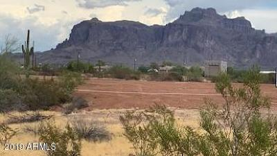 Apache Junction Residential Lots & Land For Sale: 925 N Tomahawk Road