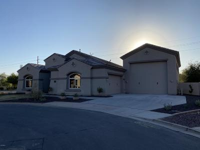 Queen Creek Single Family Home For Sale: 21490 S 217th Street