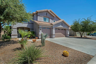 Maricopa Single Family Home For Sale: 44222 W Sedona Trail