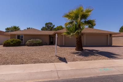 Sun City Single Family Home For Sale: 19822 N Palo Verde Drive