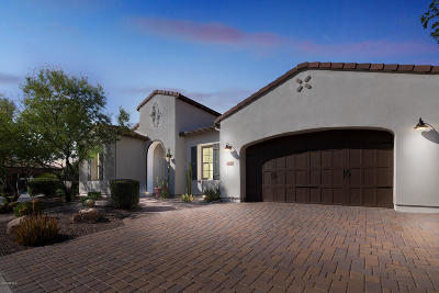 San Tan Valley Single Family Home For Sale: 1570 E Sattoo Way