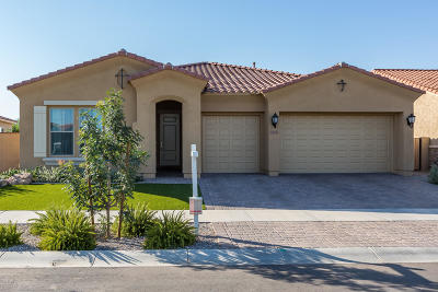 Mesa Single Family Home For Sale: 10413 E Wavelength Avenue