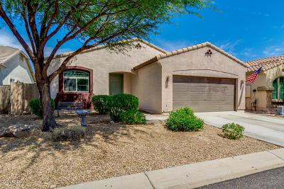 Gold Canyon Single Family Home For Sale: 18206 E La Posada Court