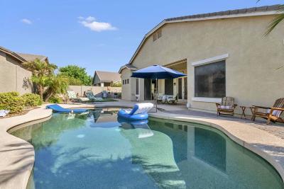 Gilbert Single Family Home For Sale: 6800 S Rachael Way