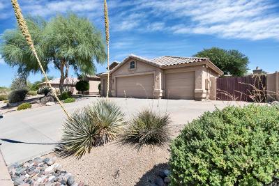 Scottsdale Single Family Home For Sale: 9120 E Calle De Valle Drive