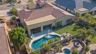 Glendale Single Family Home For Sale: 7584 W Firebird Drive