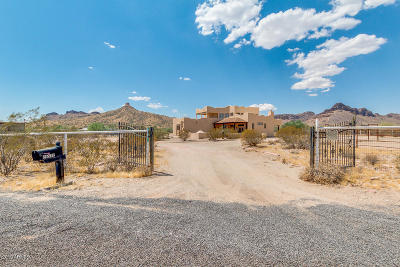 Queen Creek Single Family Home For Sale: 26532 N Gossner Road