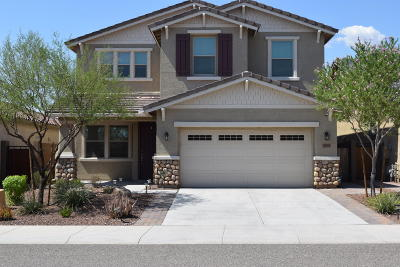 Peoria Single Family Home For Sale: 9846 W Sands Drive