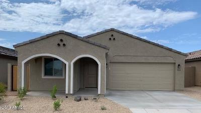 Apache Junction Single Family Home For Sale: 1722 S Hayley Road
