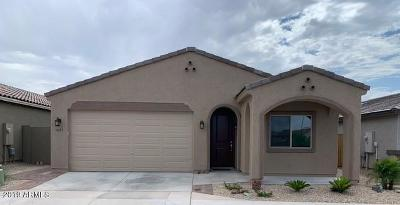 Apache Junction Single Family Home For Sale: 1746 S Hayley Road