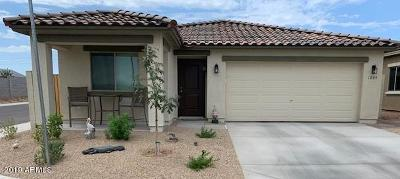 Apache Junction Single Family Home For Sale: 1758 S Hayley Road
