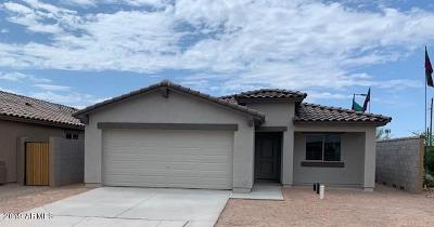 Apache Junction Single Family Home For Sale: 1794 S Descanso Road