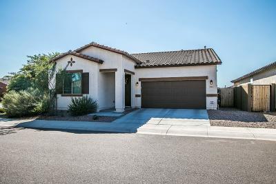 Mesa Single Family Home For Sale: 254 N Piedra Street