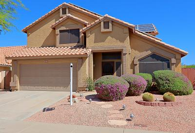 Cave Creek Single Family Home For Sale: 30237 N 42nd Street