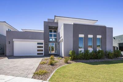 Gilbert Single Family Home For Sale: 2936 S Sandstone Court