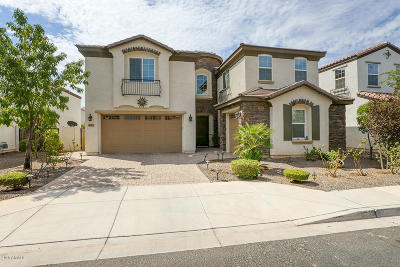 Chandler Single Family Home For Sale: 4313 E Grand Canyon Drive