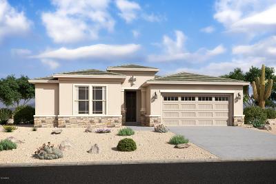 Chandler Single Family Home For Sale: 1306 E Aquarius Place