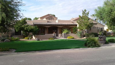 Apache Junction, Chandler, Gilbert, Mesa, Queen Creek, San Tan Valley Single Family Home For Sale: 2067 E Pickett Court