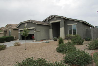 Queen Creek Single Family Home UCB (Under Contract-Backups): 1741 W Paisley Drive