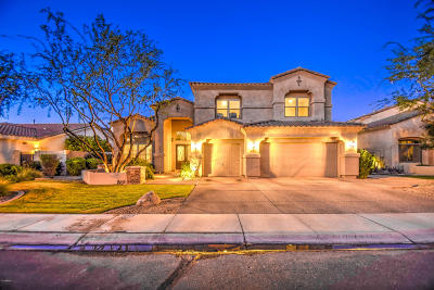 Chandler Single Family Home For Sale: 1622 W Kaibab Drive
