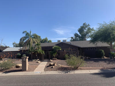 Scottsdale Single Family Home For Sale: 6025 E Corrine Drive