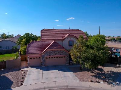 Chandler Single Family Home For Sale: 1022 S Bedford Place