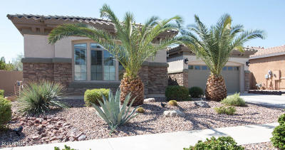 Litchfield Park Single Family Home For Sale: 19227 W Pasadena Avenue