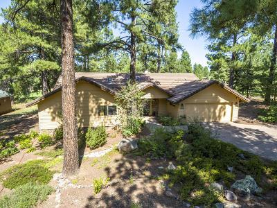 Flagstaff Single Family Home For Sale: 3050 Bear Howard