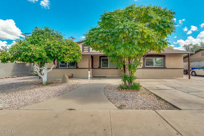 Chandler Single Family Home For Sale: 1185 N California Street