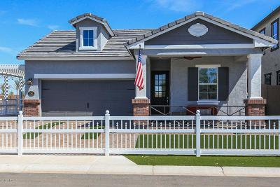 Mesa Single Family Home For Sale: 2702 S Chatsworth