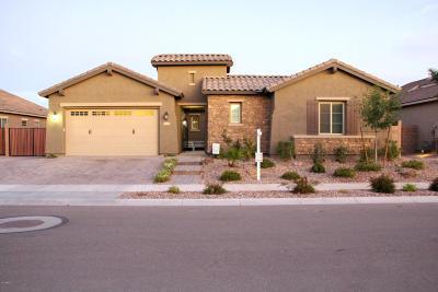 Queen Creek Single Family Home For Sale: 20075 E Kestrel Street