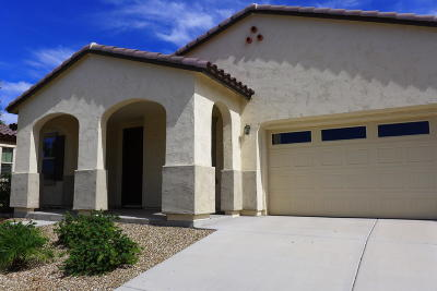 Goodyear Single Family Home For Sale: 17631 W Ashurst Drive