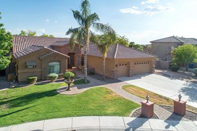 Chandler Single Family Home For Sale: 11627 E San Tan Court