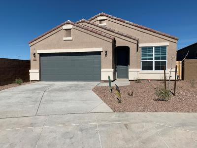 Phoenix Single Family Home For Sale: 2038 W Yellowbird Lane