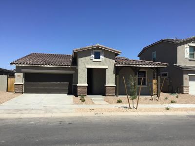 Queen Creek Single Family Home For Sale: 23104 E Camina Buena Vista