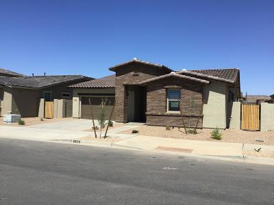 Queen Creek Single Family Home For Sale: 23072 E Camina Buena Vista