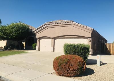 Peoria Single Family Home For Sale: 20270 N 93rd Lane