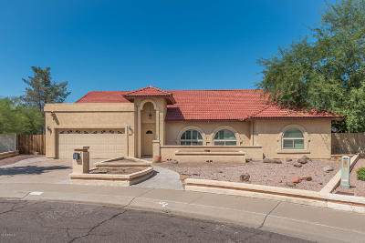 Chandler Single Family Home For Sale: 4144 W Post Road