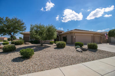 Surprise Single Family Home For Sale: 21109 N Circle Cliffs Drive