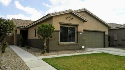 San Tan Valley Single Family Home For Sale: 304 W Stanley Avenue