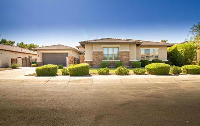 Litchfield Park Single Family Home For Sale: 4832 N Barranco Drive