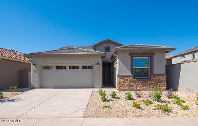 Mesa Single Family Home For Sale: 5560 S Warren Avenue