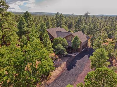 Show Low Single Family Home For Sale: 1040 S Falling Leaf Road