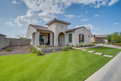 Apache Junction, Chandler, Gilbert, Mesa, Queen Creek, San Tan Valley Single Family Home For Sale: 7030 S Portland Avenue