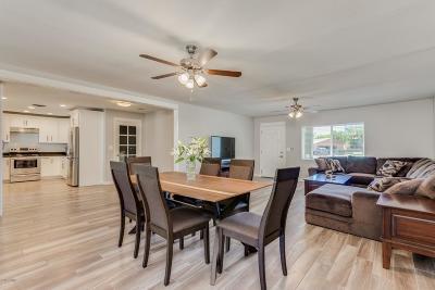 Gilbert Single Family Home For Sale: 253 S Monterey Street